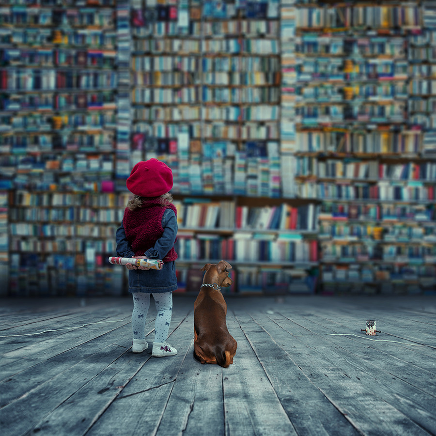 Beautiful-photo-by-Caras-Ionut-on-px-wallpaper-wp423994