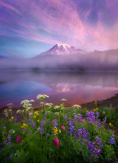 Beauty-Mt-Rainier-Beautiful-landscape-photography-nature-images-wallpaper-wp4405000