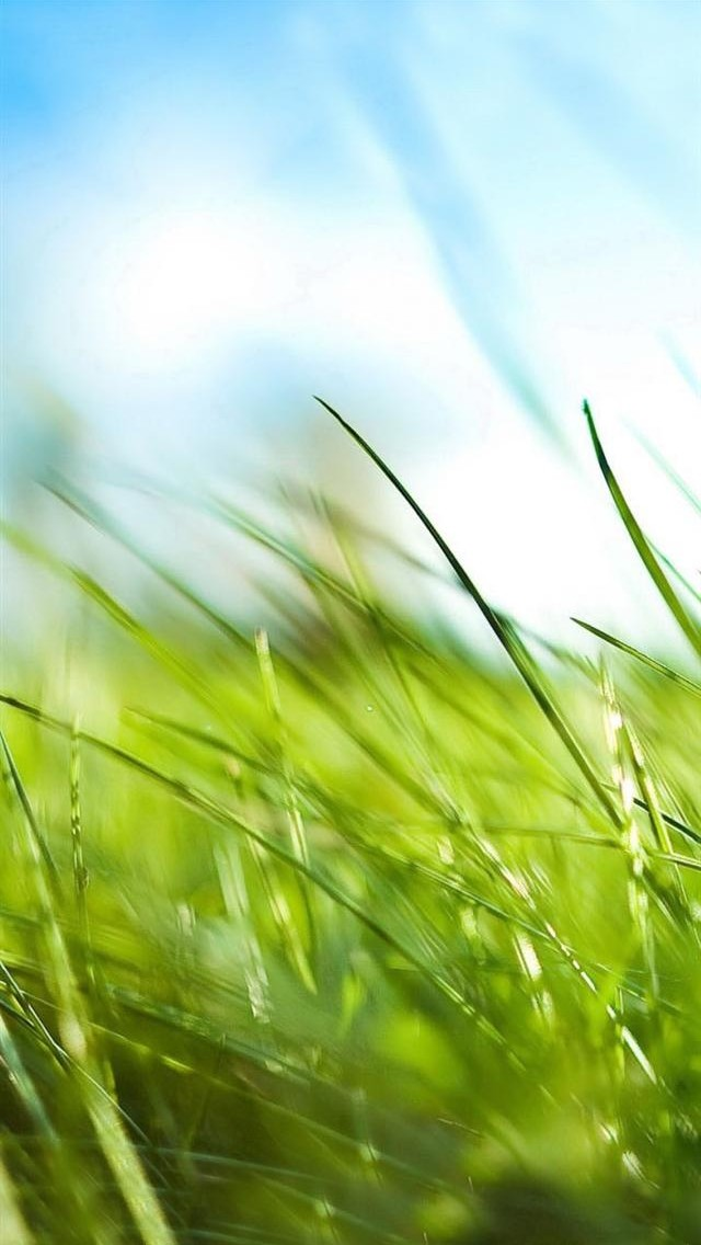 Best-iPhone-HD-Photo-wallpaper-wp60083