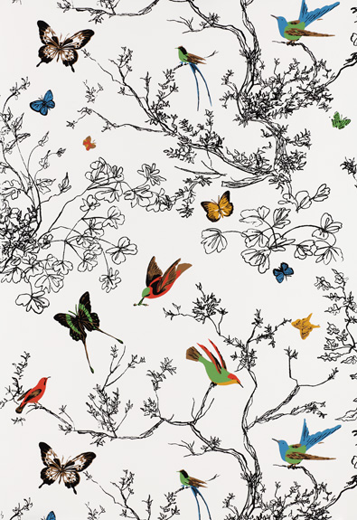 Birds-and-Butterfly-from-Schumacher-s-Modern-Nature-Collection-wallpaper-wp5204661