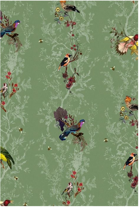 Birds-n-Bees-%C2%A3-Per-Roll-Timourous-Beasties-wallpaper-wp300622