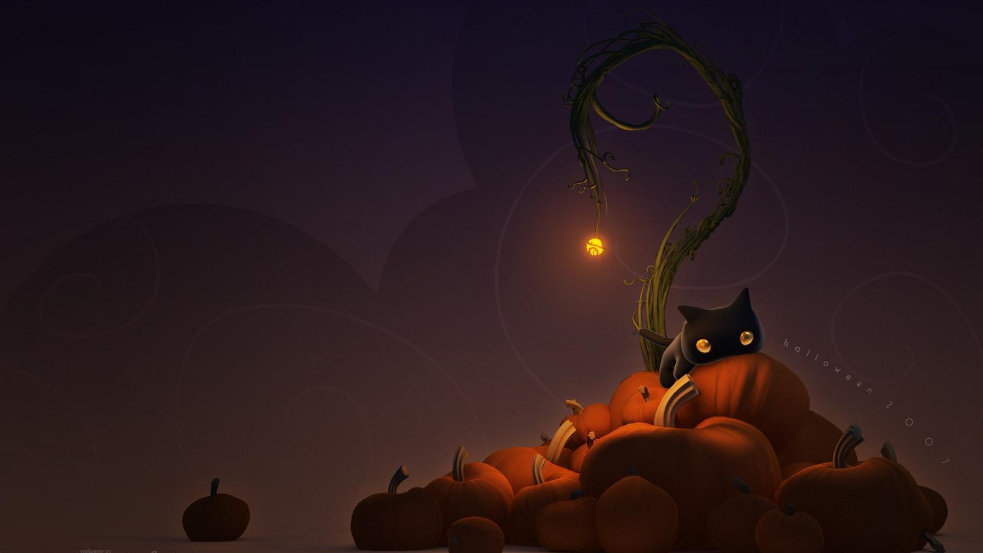 Black-Cat-Pumpkin-Halloween-wallpaper-wp3603395