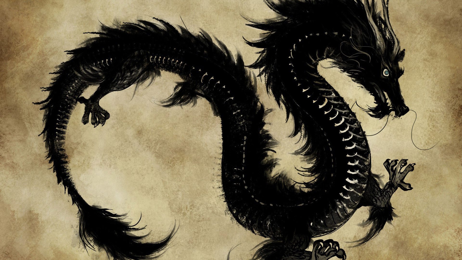 Black-chines-Dragon-1920-x-1080-Need-iPhone-S-Plus-Background-for-IPhoneSPlus-wallpaper-wp3603401