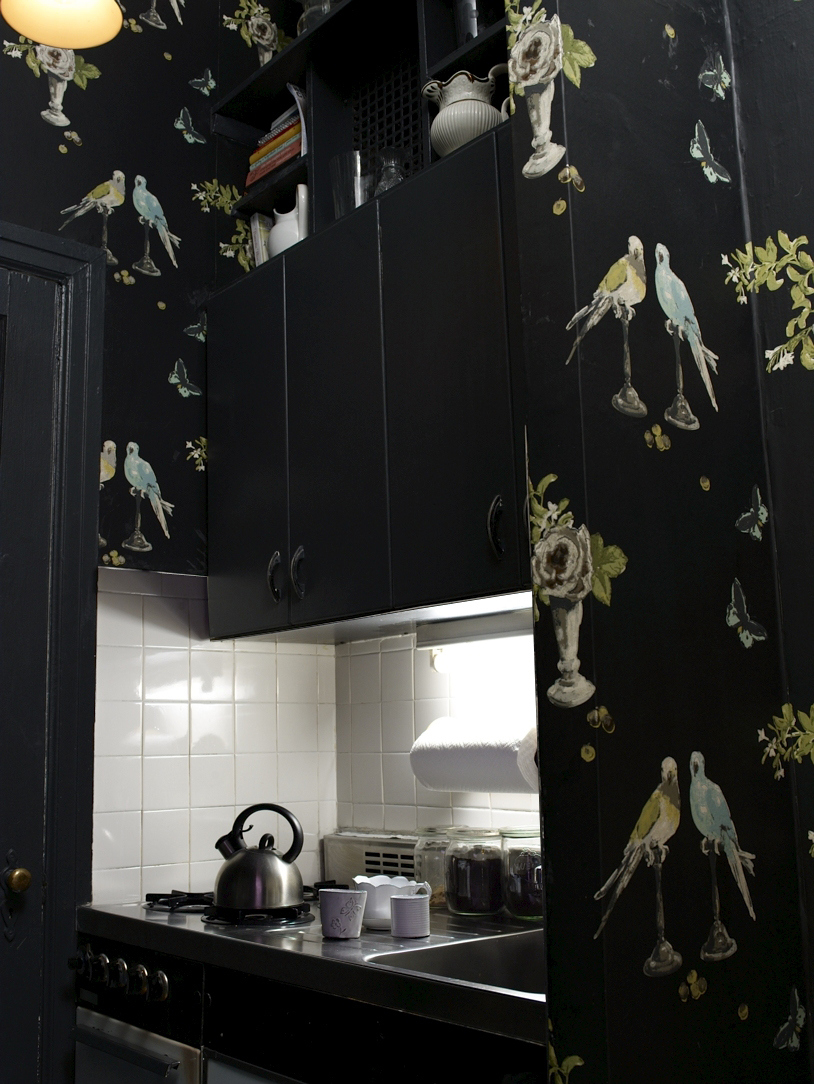 Black-kitchen-with-Nina-Campbell-Perroquet-www-osborneandlittle-com-wallpaper-wp3003741