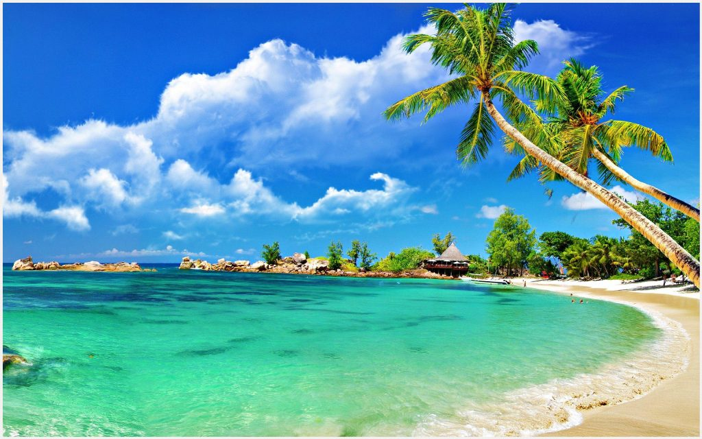 Blue-Sky-And-Green-Beach-blue-sky-and-green-beach-1080p-blue-sky-and-green-be-wallpaper-wp3403411