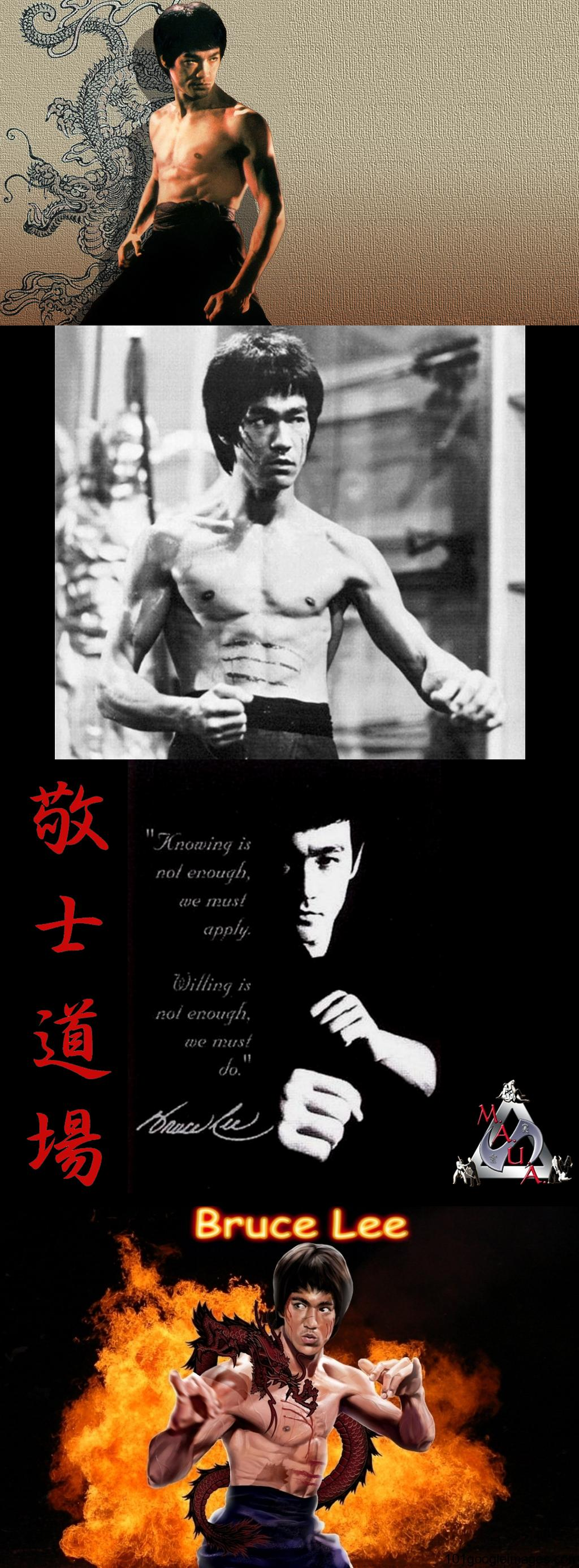 Bruce-Lee-enter-the-dragon-wallpaper-wp440213