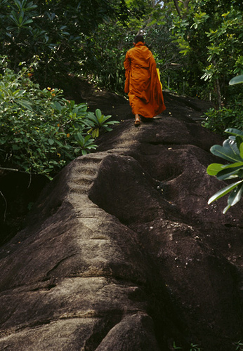 Buddhist-monk-on-ancient-footpath-to-monastery-Maligatenna-Sri-Lanka-wallpaper-wp3003996