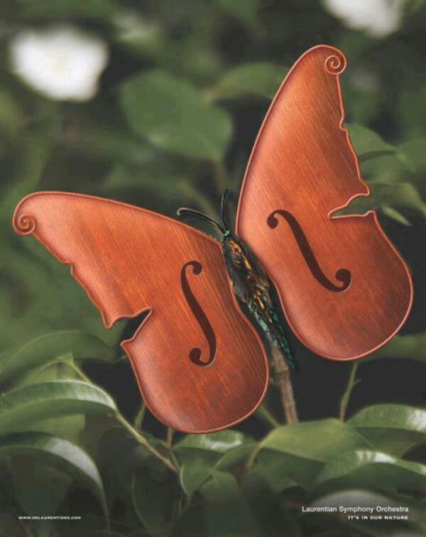 Butterfly-violin-wallpaper-wp4405443