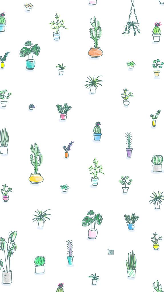 Cactos-estampa-wallpaper-wp5804369