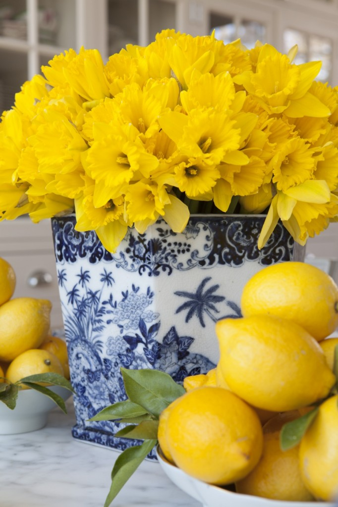 Carolyne-Roehm-daffodils-in-Chinese-porcelain-vase-wallpaper-wp5005761
