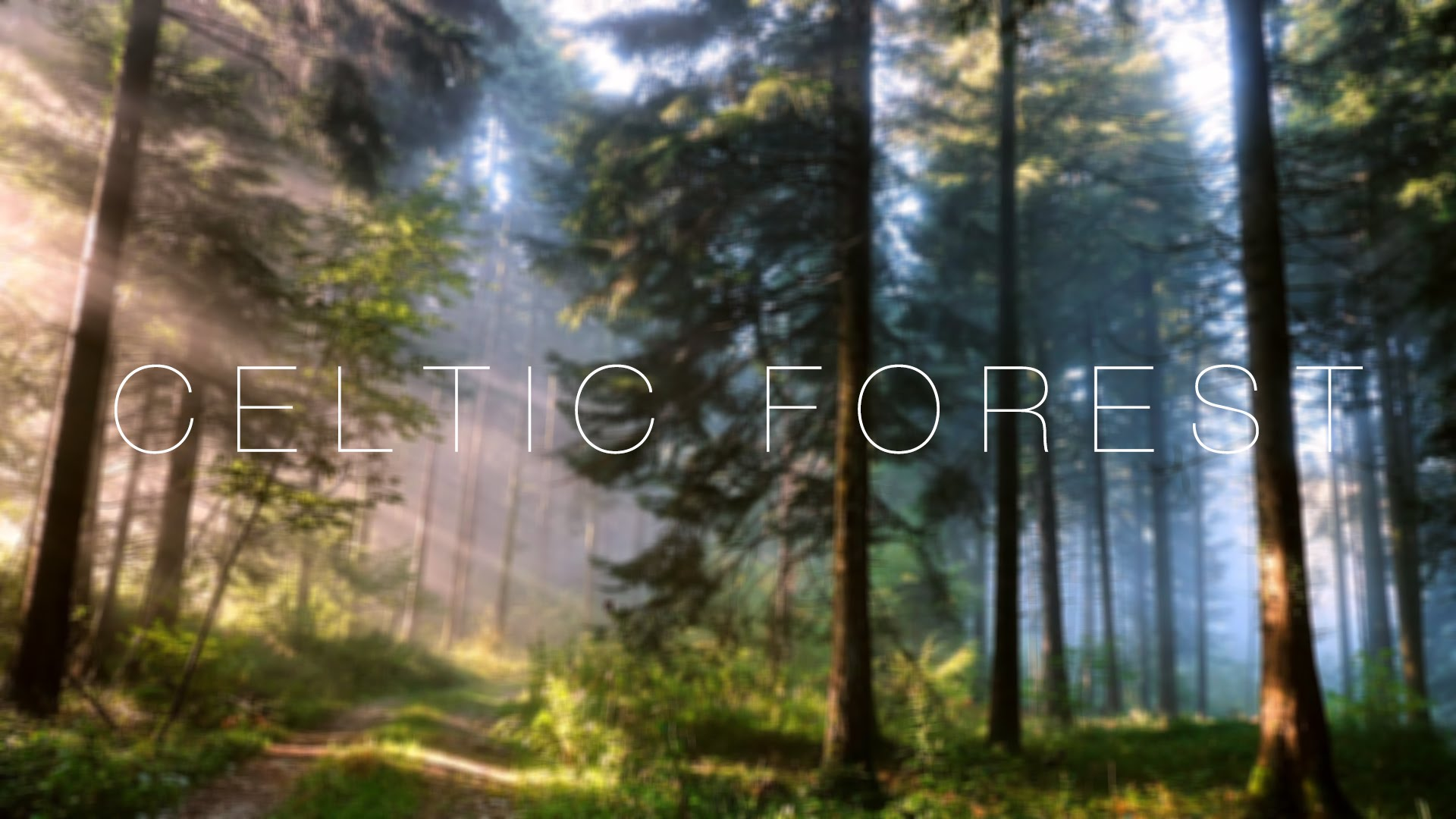 Celtic-Forest-Piano-and-Irish-Low-D-Whistle-wallpaper-wp3403809