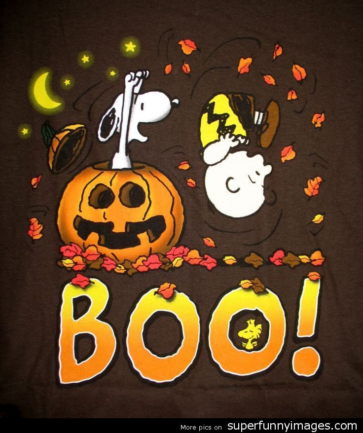 Charlie-Brown-Halloween-Desktop-Panda-Download-thousand-of-for-free-wallpaper-wp4003875-1