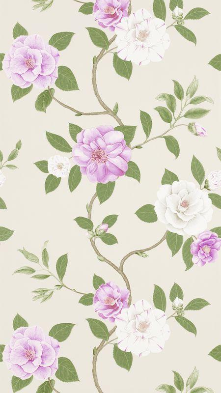 Christabel-wallpaper-wp50013846