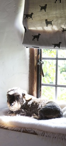 Comfy-sunny-windowsill-with-a-blind-in-Emily-Bond-Labrador-fabric-wallpaper-wp424652-1