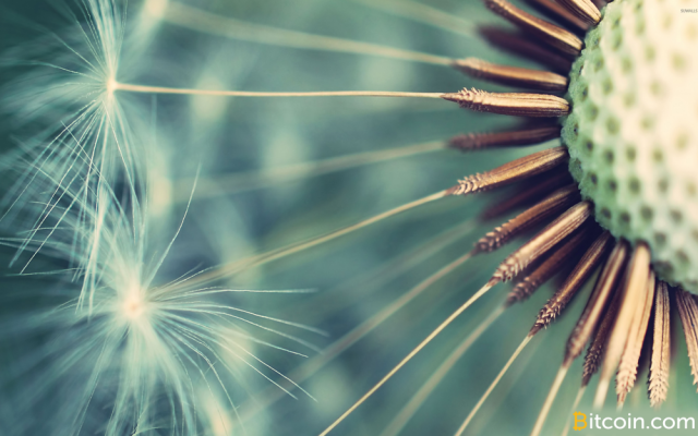 Comment-on-New-Dandelion-Proposal-Aims-to-Anonymize-Bitcoin-Transaction-Broadcasts-by-Mario-Casanova-wallpaper-wp3604226