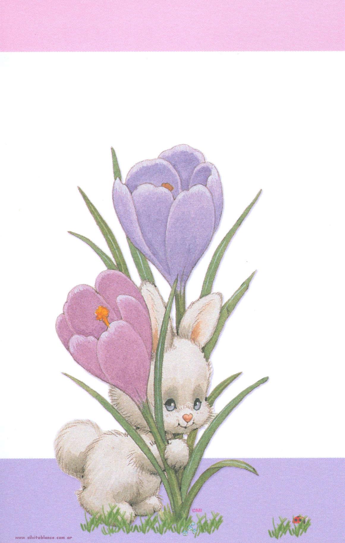 Conejos-wallpaper-wp5205361