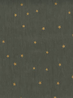 Constellations-Stars-AmericanBlinds-com-wallpaper-wp3004541