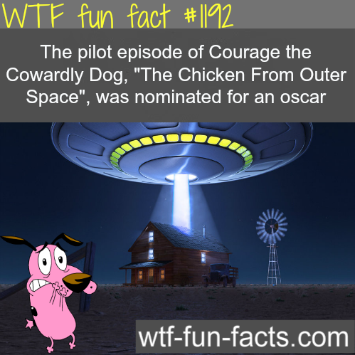 Courage-the-Cowardly-Dog-The-Chicken-From-Outer-space-movies-facts-MORE-OF-WTF-FUN-FACTS-are-c-wallpaper-wp6002811