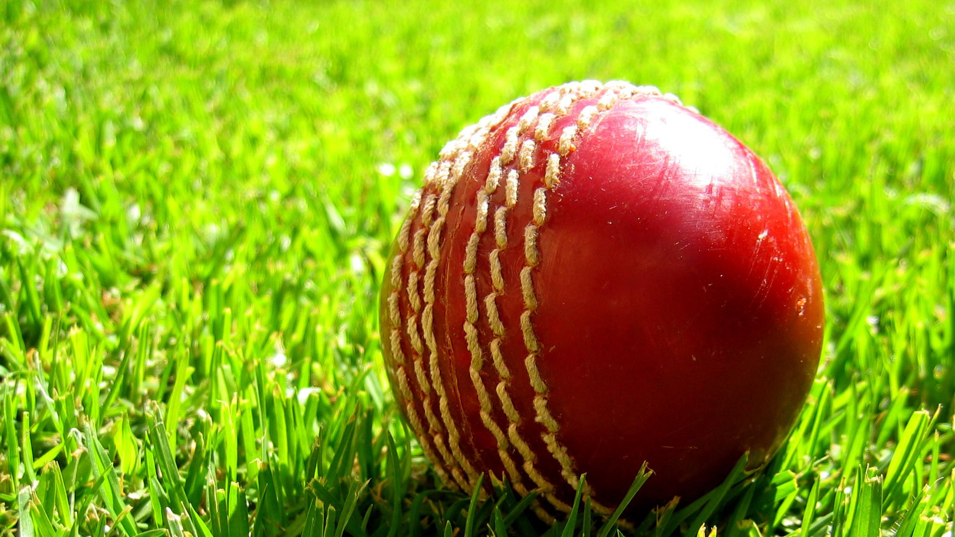 Cricket-1080p-http-and-backgrounds-net-cricket-1080p-wallpaper-wp3604412
