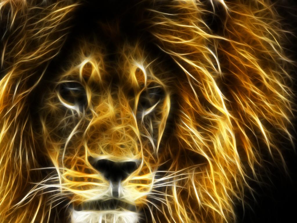 D-Cool-Lion-wallpaper-wp400890-1