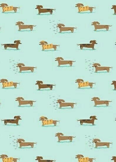 Dachshund-wallpaper-wp4002186