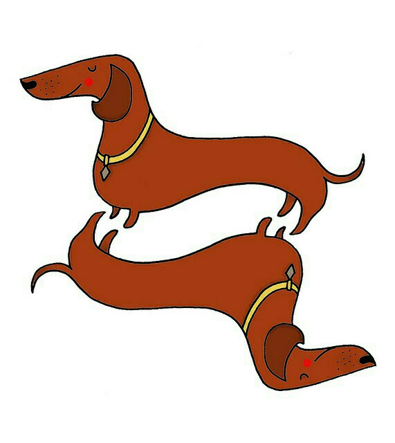 Dachshund-wallpaper-wp4002203