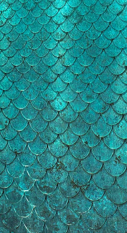 Detail-of-a-bronze-Petal-Water-Wall-Candy-wallpaper-wp5604361