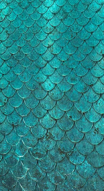 Detail-of-a-bronze-Petal-Water-Wall-Candy-www-pinterest-com-seeyond-wallpaper-wp4406374