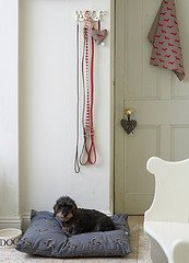 Dog-bed-in-Emily-Bond-Wire-Haired-Jack-Russell-Linen-Union-wallpaper-wp424994-1