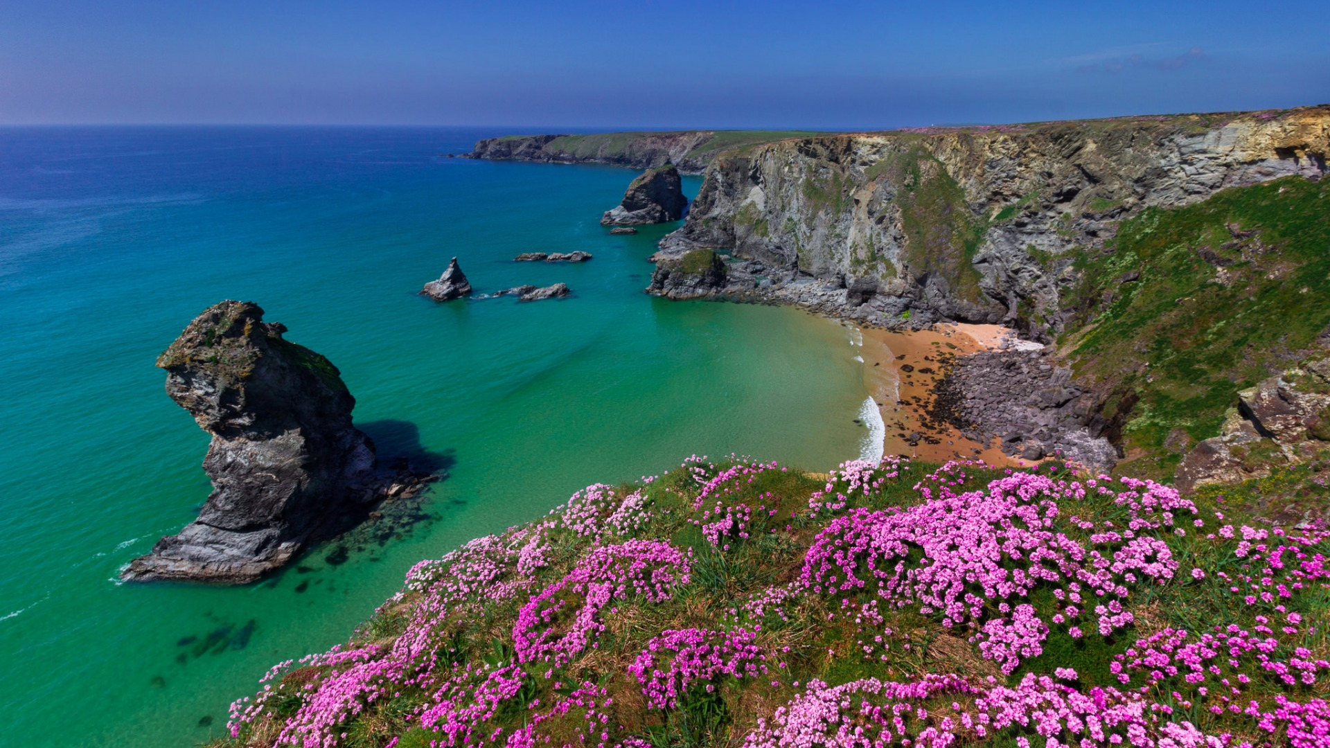 Download-sea-flowers-rocks-coast-England-England-Cornwall-Cornwall-Bedruthan-Steps-wallpaper-wp3404980