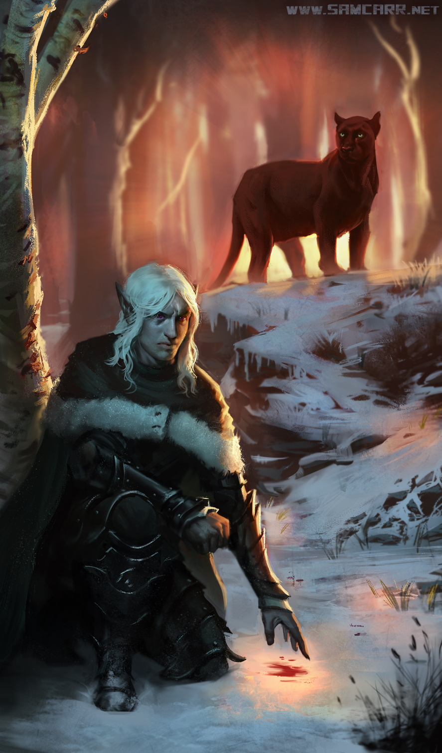 Drizzt-Do-Urden-and-Guenhwyvar-by-SamC-Art-on-deviantART-wallpaper-wp5404670