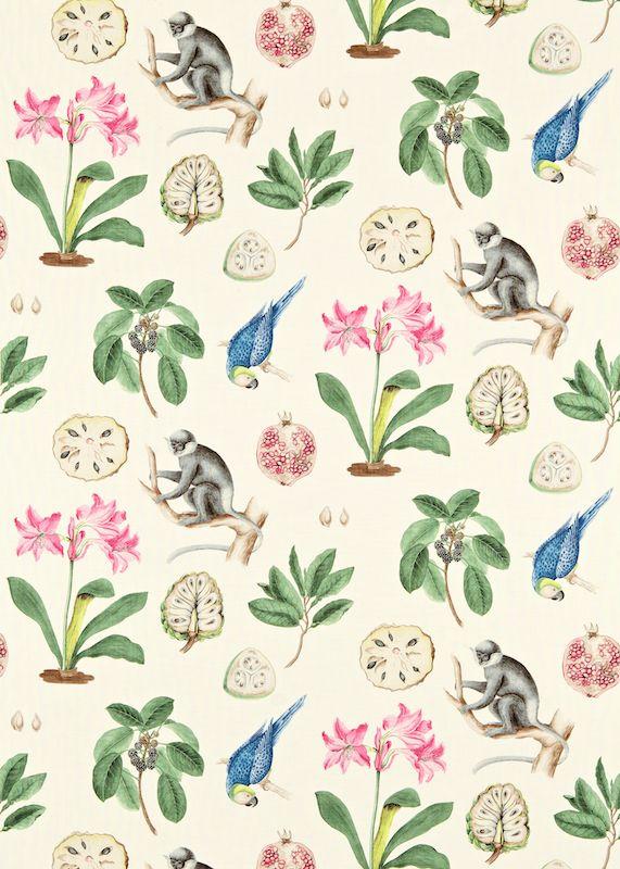 Fabric-Capuchins-wallpaper-wp5007283