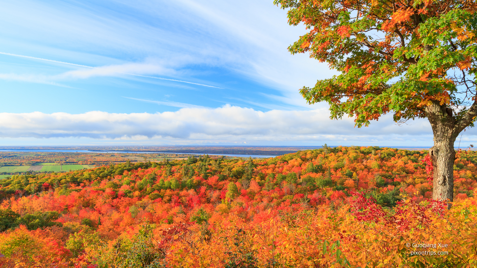 Fall-colours-in-Ottawa-Valley-Canada-1920x1080-Need-iPhone-S-Plus-Background-for-wallpaper-wp3405360