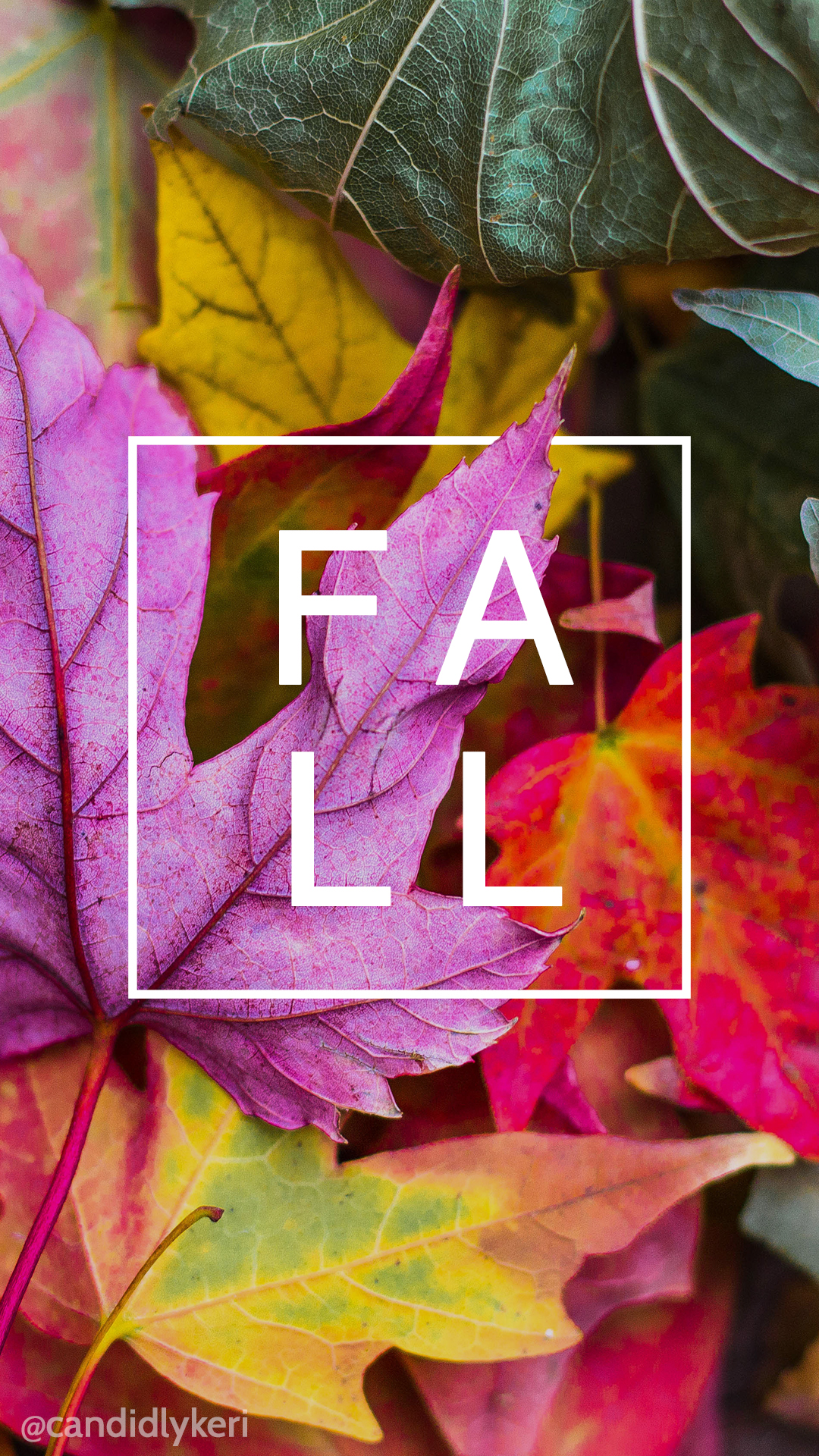 Fall-leaf-leaves-colorful-nature-you-can-download-for-free-on-the-blog-For-any-device-mo-wallpaper-wp3405367