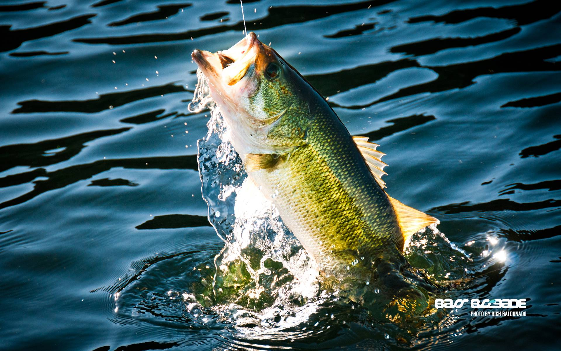 Fishing-HD-desktop-Widescreen-High-Definition-wallpaper-wp3405567