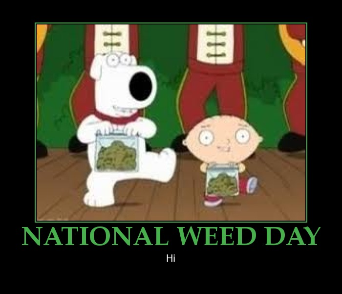 Funny-Weed-Pictures-and-Sayings-National-Weed-Day-in-the-USA-national-weed-day-funny-poster-%E2%80%93-e-wallpaper-wp425650