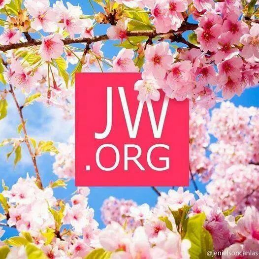 Get-all-your-Bible-questions-answered-at-this-website-for-free-wallpaper-wp425694-1