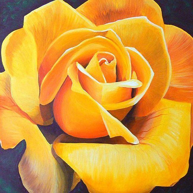 Gorgeous-wallpaper-wp5605256