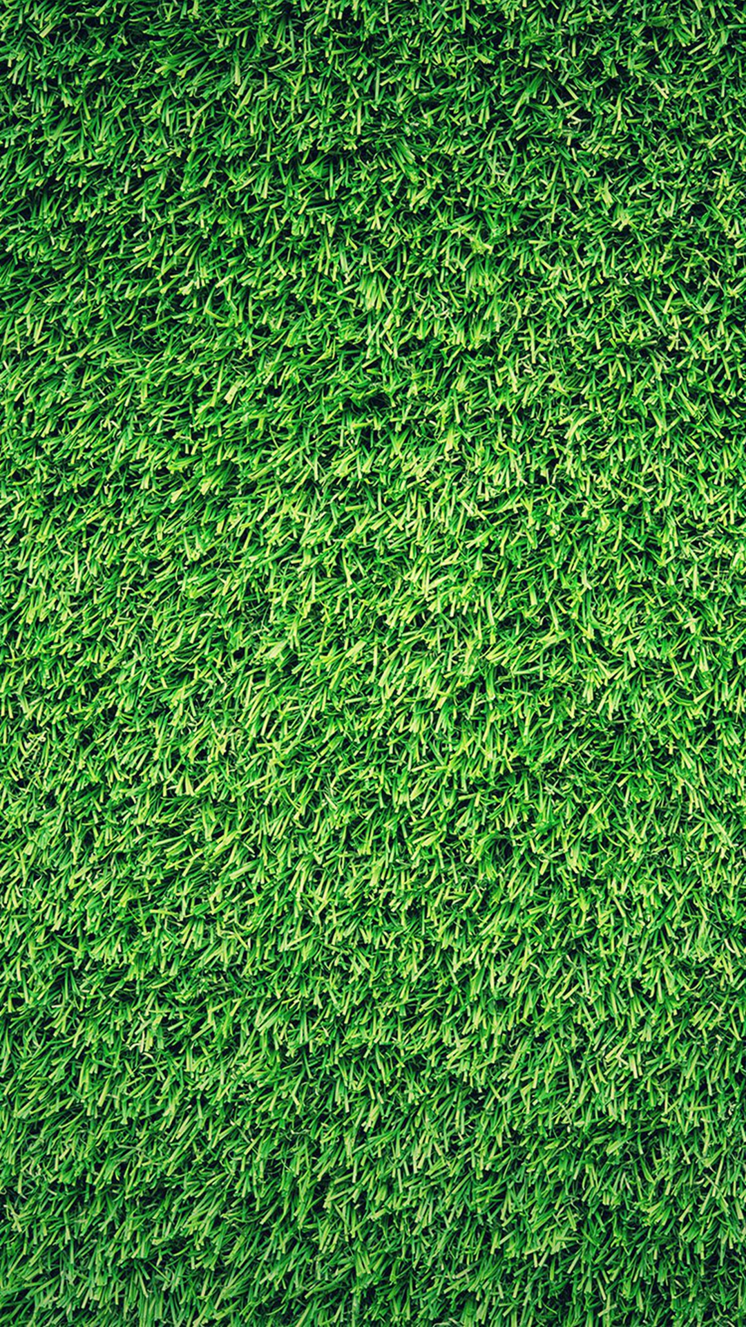 Grass-Green-Pattern-Nature-iPhone-plus-wallpaper-wallpaper-wp4806944