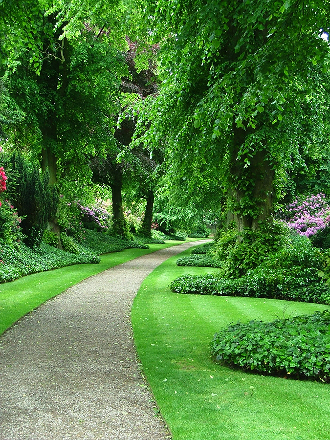 Greenery-Garden-Path-wallpaper-wp5405419