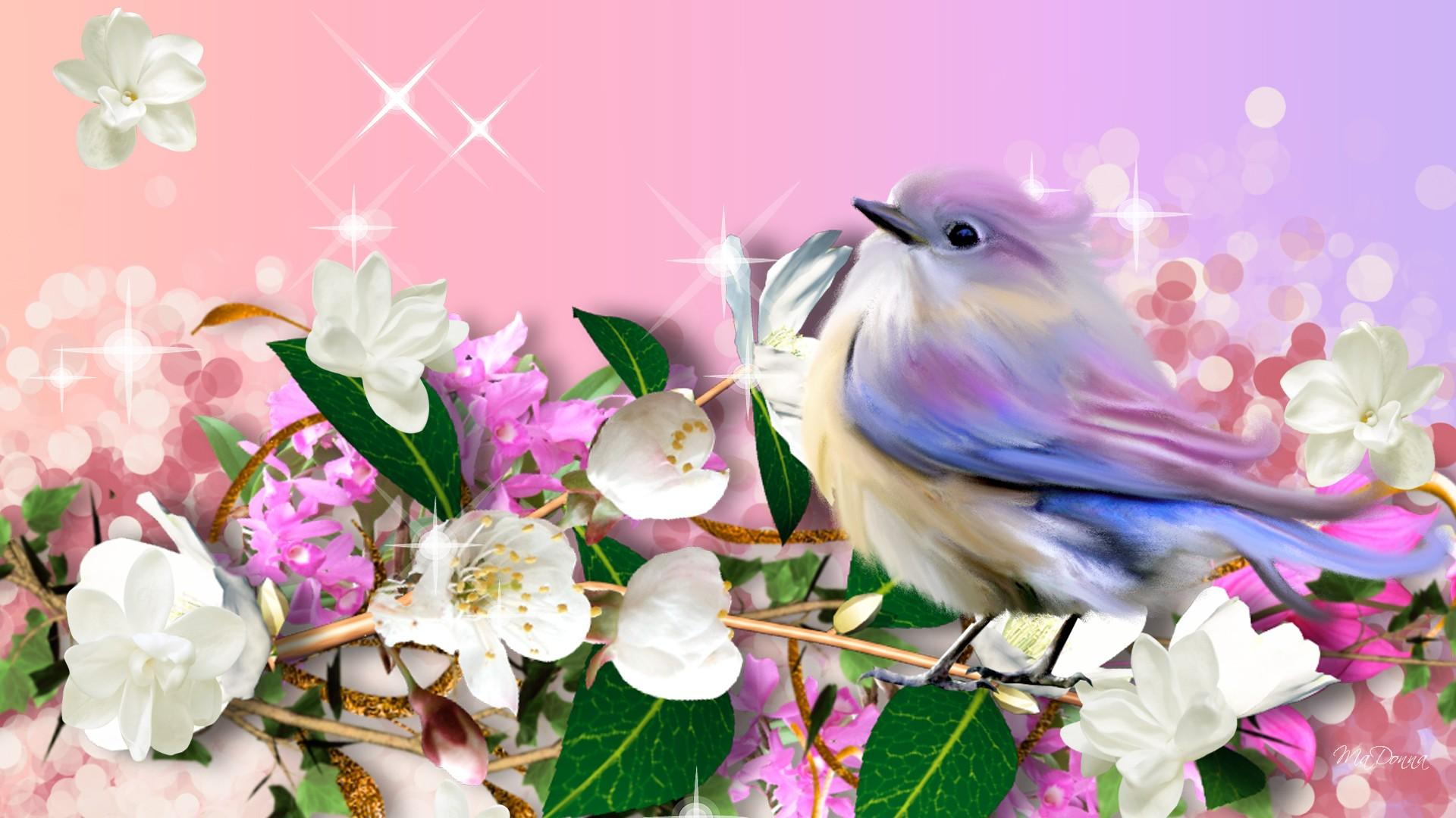 HD-A-Little-Bird-Told-Me-wallpaper-wp5008403