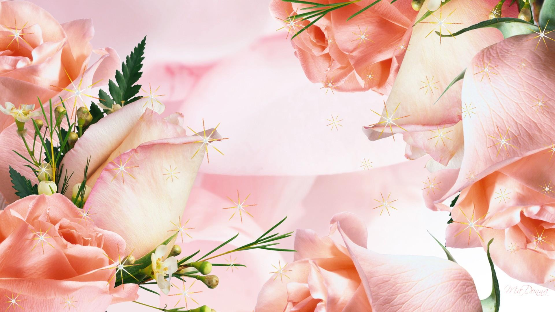 HD-Apricot-Roses-wallpaper-wp5008407