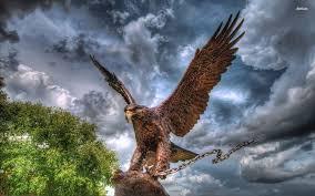 HD-eagle-pictures-ile-ilgili-g%C3%B6rsel-sonucu-wallpaper-wp5601552