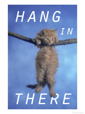 Hang-in-there-kitten-wallpaper-wp5008303