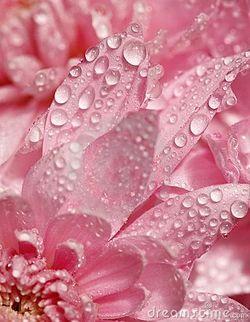 He-will-come-to-us-like-the-rain-Hosea-wallpaper-wp4807180