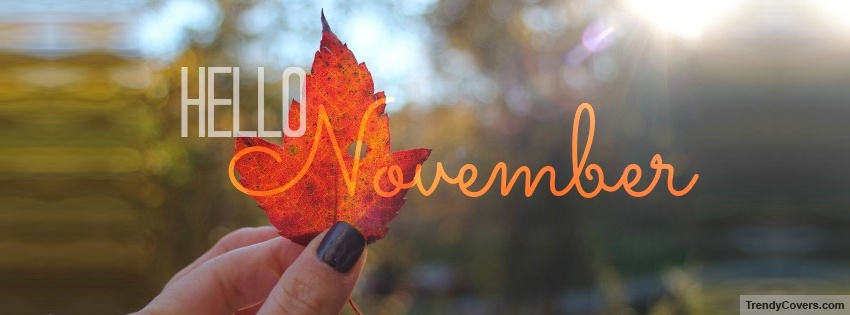 Hello-November-Facebook-Covers-All-New-Facebook-Cover-Photos-For-Your-Timeline-wallpaper-wp426085-1