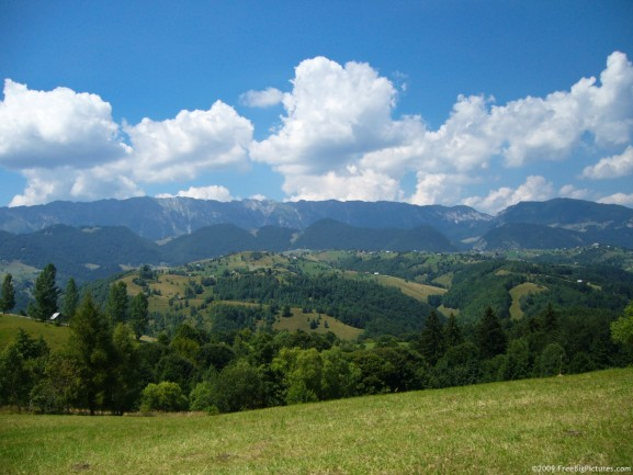 High-country-scene-in-Summer-wallpaper-wp5605504
