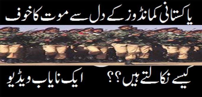 How-To-Train-Pakistani-Commandos-A-Rare-Video-SSG-Commandos-Training-Video-Pakistan-ARMY-wallpaper-wp4606905