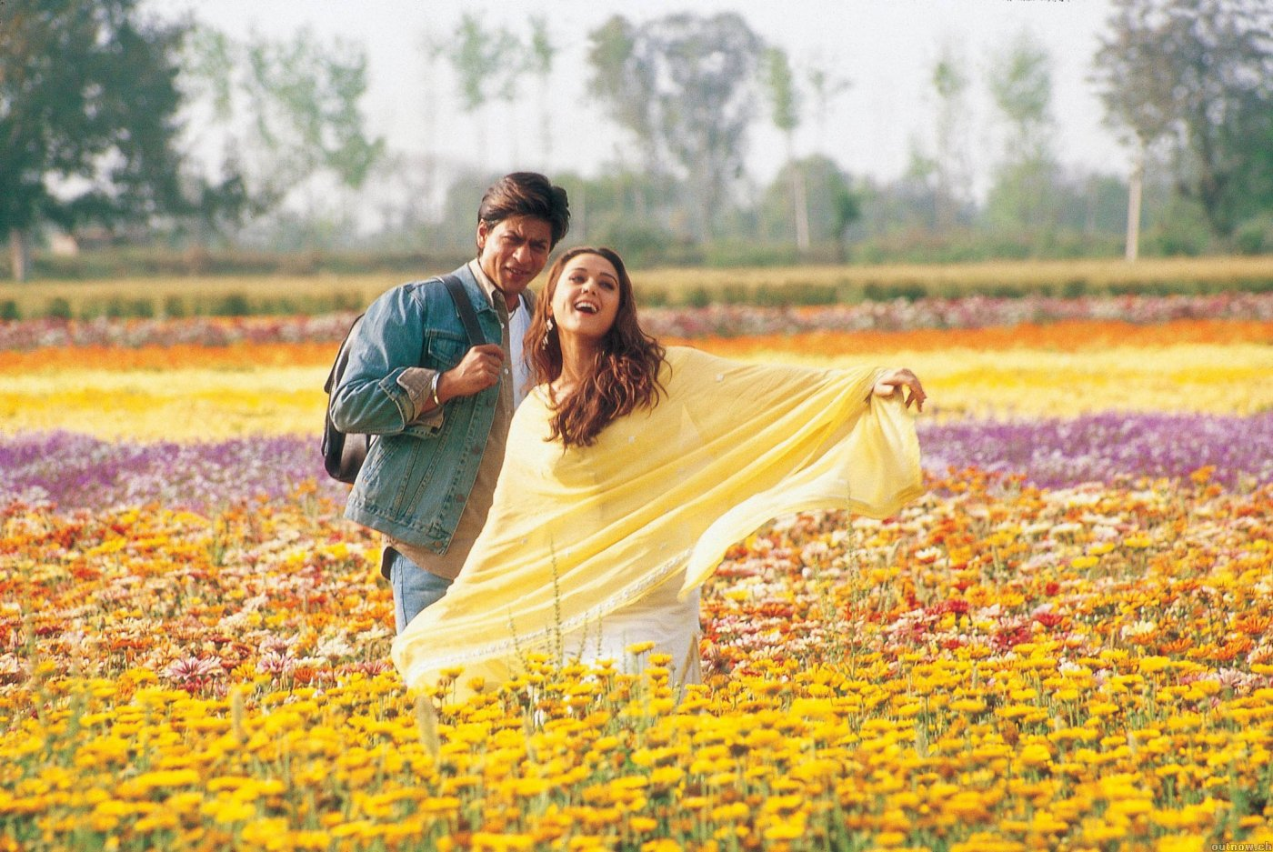 I-m-still-not-sick-of-watching-bollywood-lovers-frolic-through-fields-of-flowers-Veer-Zaara-wallpaper-wp4408160