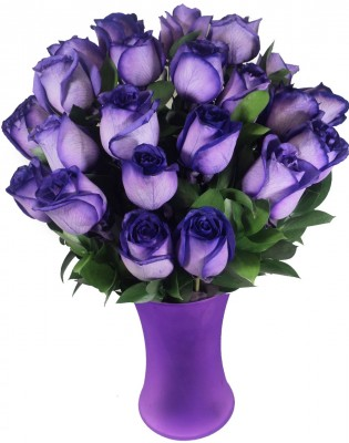 I-would-so-buy-these-for-cousins-birthday-but-they-dont-sell-purple-roses-at-work-wallpaper-wp6004091